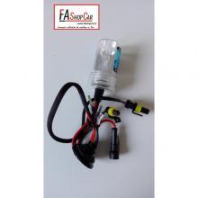 LAMPADA 880/881 XENON - VOS880_1