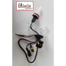 LAMP. H11 12/24 35W XENON - F20H11